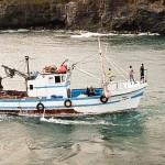 Chegada de barco de pesca ao Porto Novo