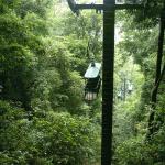 Costa Rica - Floresta Tropical do Pacífico