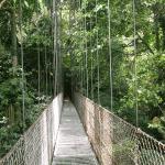Costa-Rica-Ponte-Levedica-P4200559