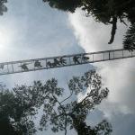 Costa-Rica-Ponte-dos-Macacos-P4200599