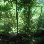 Lagoa Cerro Chato