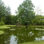 Parque de Terra Nostra | Foto de Teresa Franco
