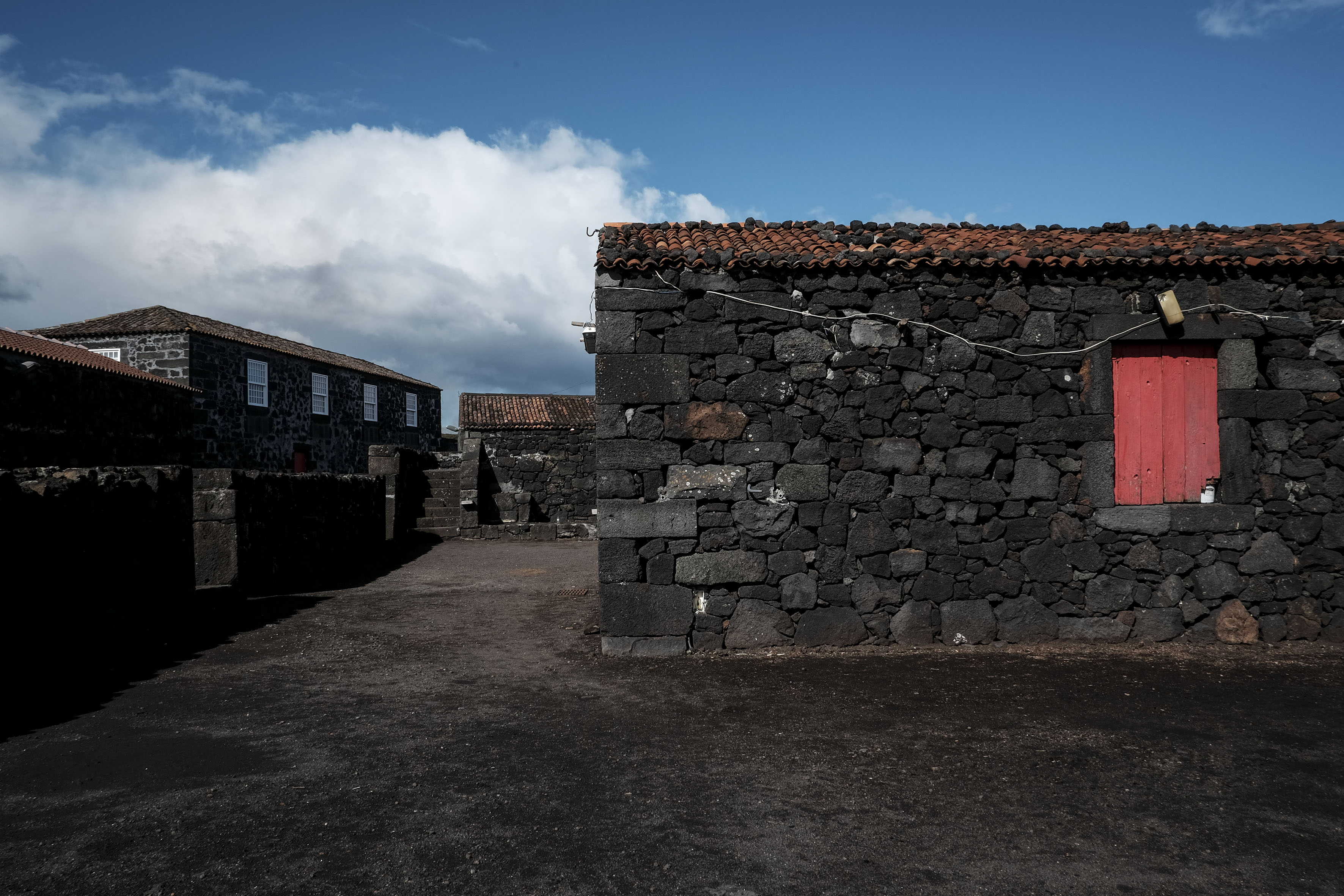 Pico - Foto de Manuel Roberto