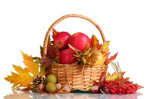 alimentos-outono-inverno